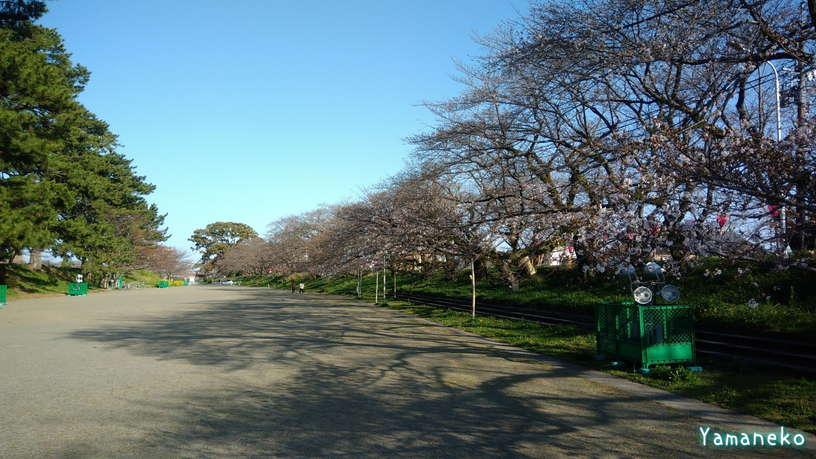 瀬戸川20210323