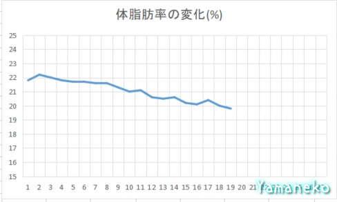 体脂肪率グラフ4か月目
